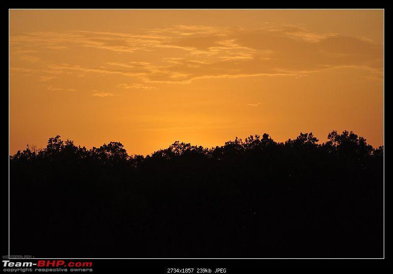 A Nikon D5000 in the land of the tiger - Kanha National Park visit.-dsc_0430.jpg
