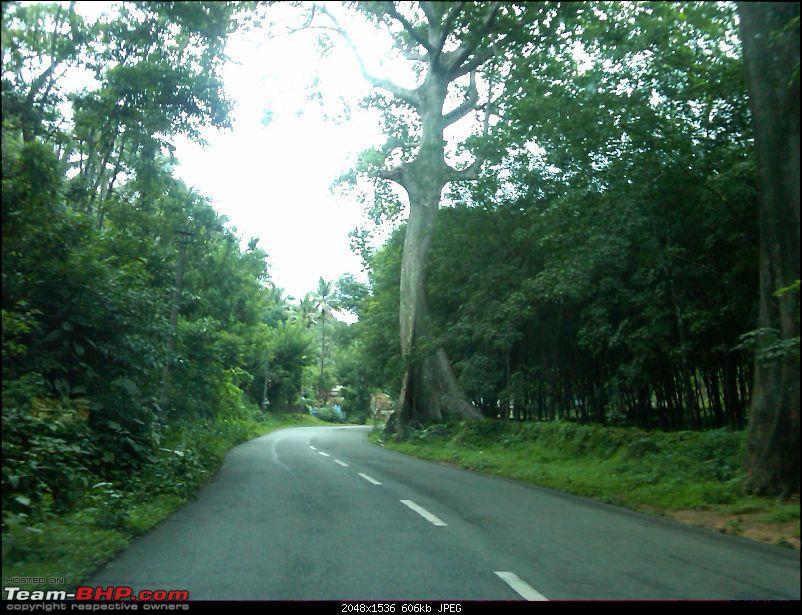 Cochin - Kutallam (Courtallam)-img00649201106111514.jpg