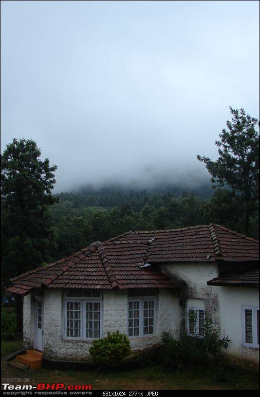 The road truly  less traveled in trail of the monsoon : Ambanad Estate Sojourn*-dsc07577.jpg