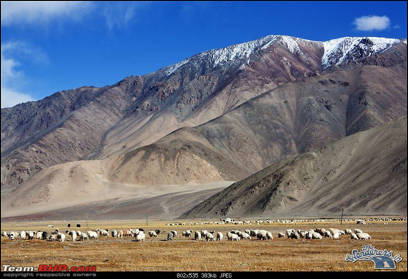 "Self-Drive Expedition Travel-Ladakh and cold desert Changthang in ""off-season"" Oct 10-img_4827.jpg"