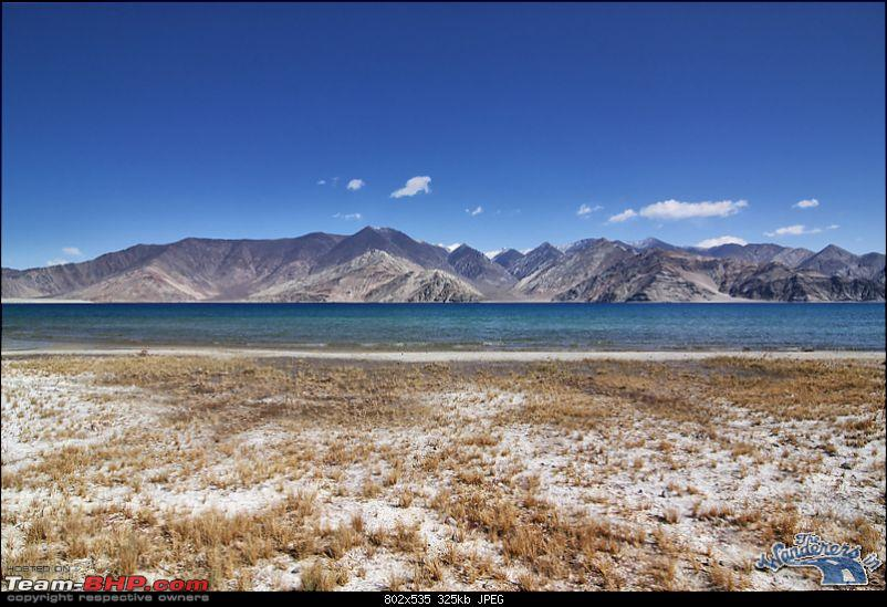 """Self-Drive Expedition Travel-Ladakh and cold desert Changthang in """"off-season"""" Oct 10-img_4436.jpg"""