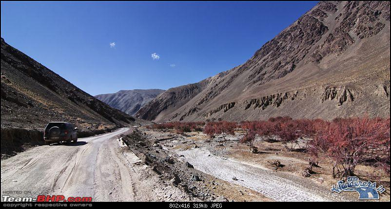 """Self-Drive Expedition Travel-Ladakh and cold desert Changthang in """"off-season"""" Oct 10-img_5113.jpg"""