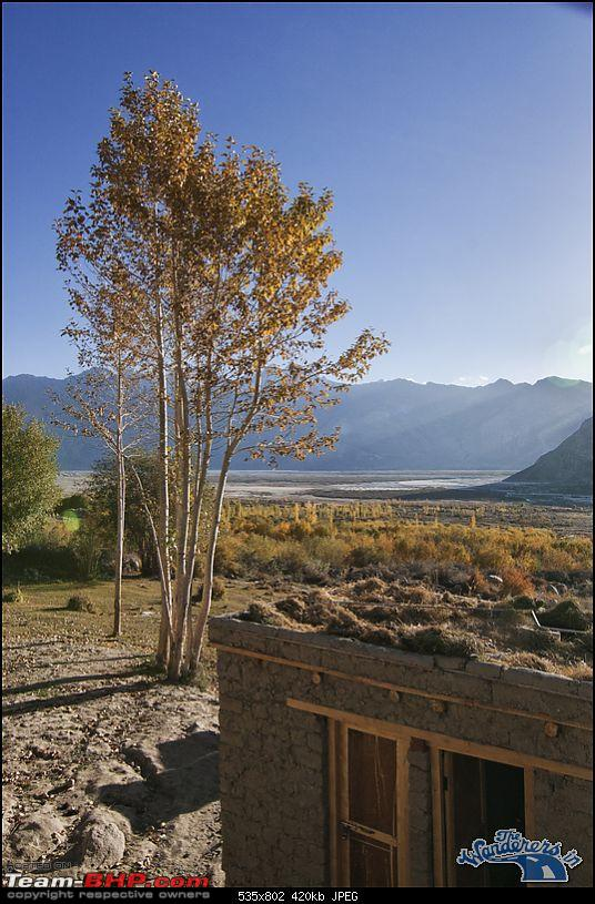 """Self-Drive Expedition Travel-Ladakh and cold desert Changthang in """"off-season"""" Oct 10-img_5763.jpg"""