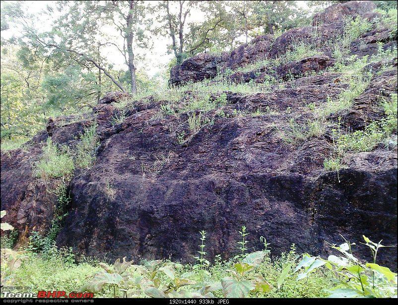 Tadoba Andhari Tiger Reserve-05102008111.jpg