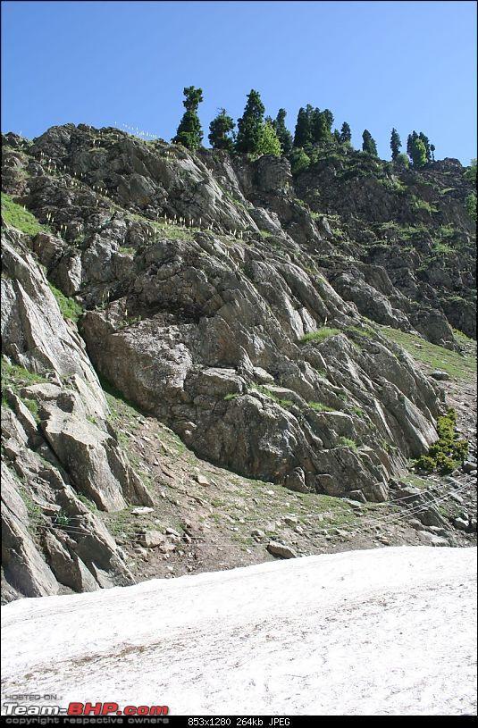 Kashmir : Nature's bewitching drama !!-img_0126.jpg