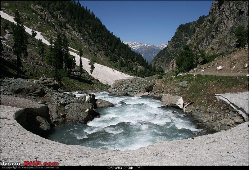 Kashmir : Nature's bewitching drama !!-img_0174.jpg