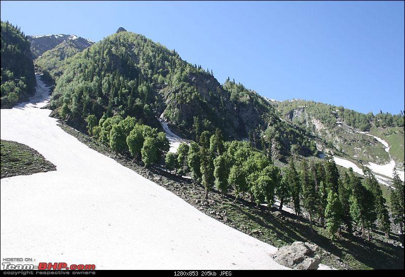 Kashmir : Nature's bewitching drama !!-img_0180.jpg