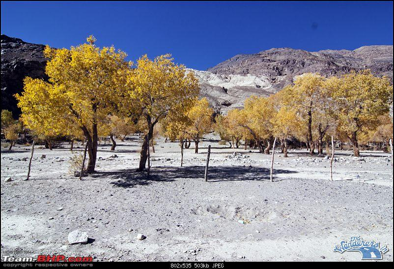 """Self-Drive Expedition Travel-Ladakh and cold desert Changthang in """"off-season"""" Oct 10-img_5843.jpg"""