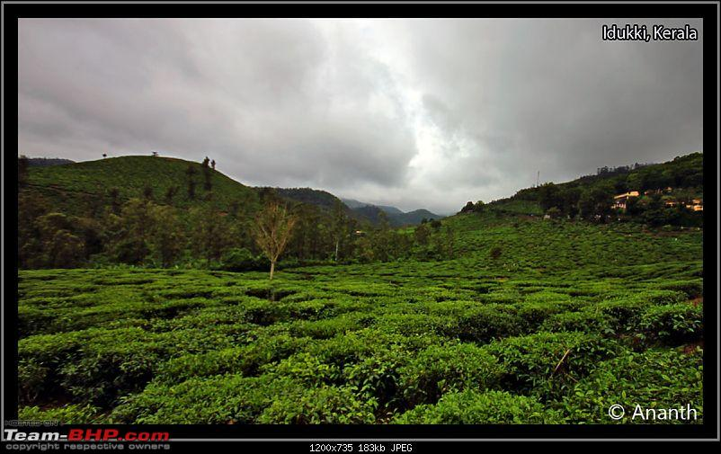 "In Search Of ""The God"" – In God's Own Country, Kerala-img_0399.jpg"