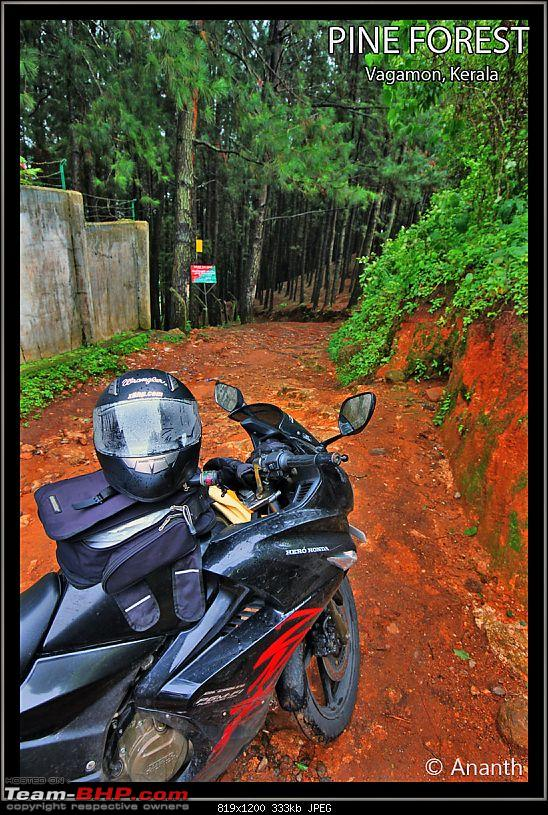 "In Search Of ""The God"" – In God's Own Country, Kerala-img_0543.jpg"