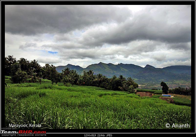 "In Search Of ""The God"" – In God's Own Country, Kerala-img_0382-2.jpg"