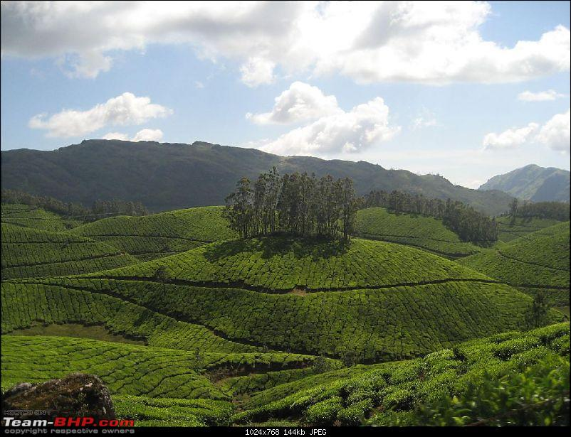 Yet another visit to God's Own Country - MUNNAR!!!-img_4386.jpg
