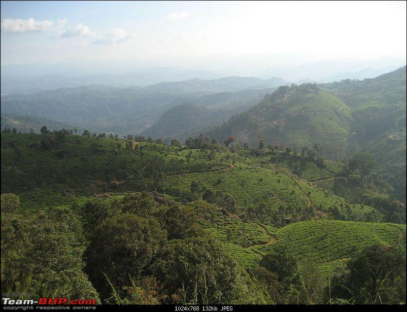 Yet another visit to God's Own Country - MUNNAR!!!-img_4388.jpg