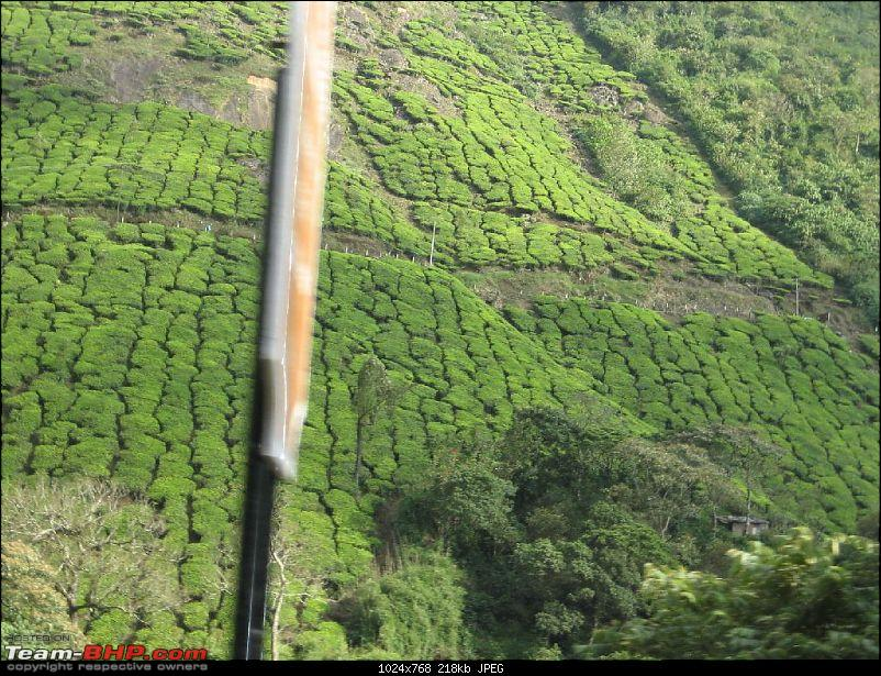 Yet another visit to God's Own Country - MUNNAR!!!-img_4406.jpg