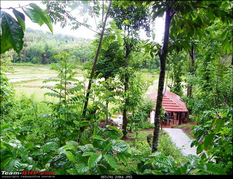 Operation Tiger: Wayanad-dining-area.jpg