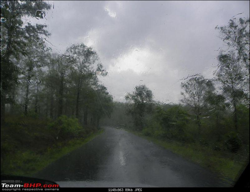 Operation Tiger: Wayanad-back-bangalore3.jpg