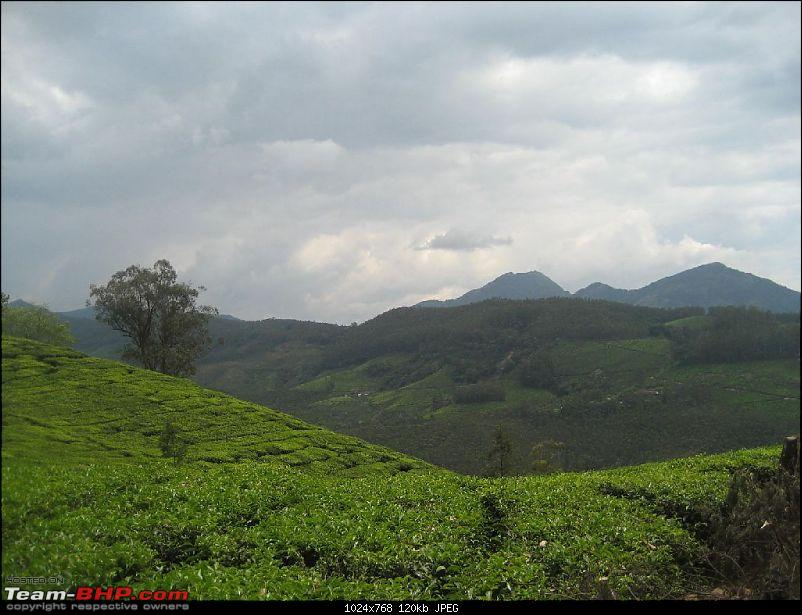Yet another visit to God's Own Country - MUNNAR!!!-img_4592.jpg