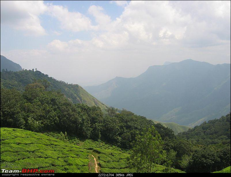 Yet another travelogue on Munnar-img_0234.jpg