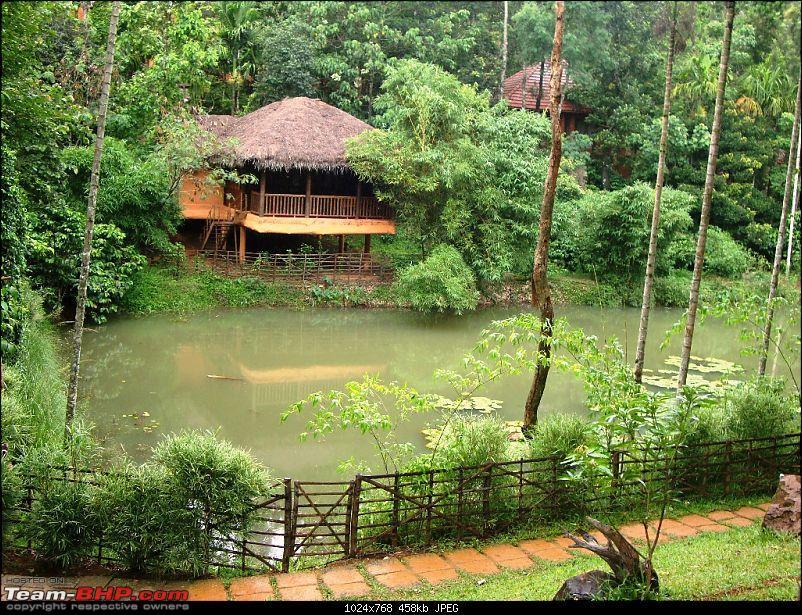 My Sojourn - Chennai to Wayanad via Mysore-dsc01224-copy.jpg