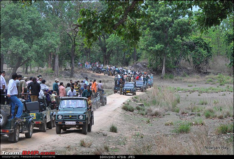 Call of the Wild: A 3500 km roadtrip to Pench, Bandhavgarh and Kanha in a Fortuner-dsc_7459.jpg