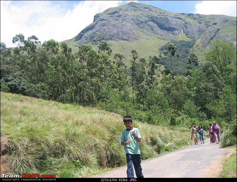 Yet another travelogue on Munnar-img_0314.jpg