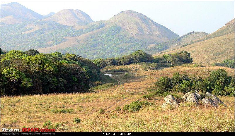 A Day and a Night in Chamarajanagar Forest with fellow Bhpians...-53.jpg