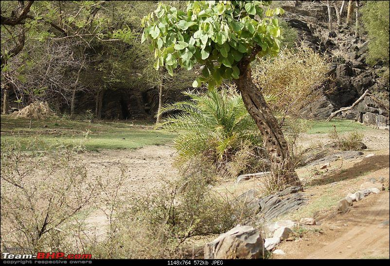 Sariska Tiger Reserve - Land of Tigers? Quick getaway from Gurgaon-sariska-landscape-previous-visit1.jpg