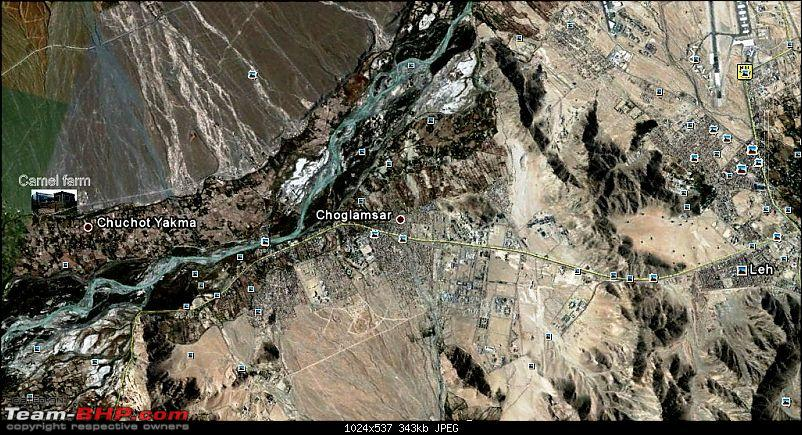 Hawk-On-Fours� (H-4�) Roadtrip:  Leh(t)'s go to Ladakh & Srinagar with QuickSilver.-camel-farm-2-0.jpg