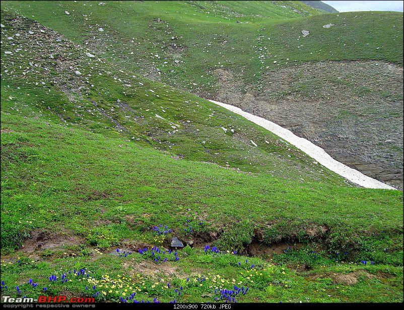 Fauji's Drivologues : Magical Mountainscapes - A Pictorial ode to Ladakh!-.31-mlr.jpg