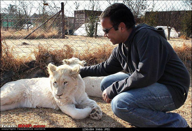 Today will be remembered as the day I played with lions :)-img_0598_copy.jpg