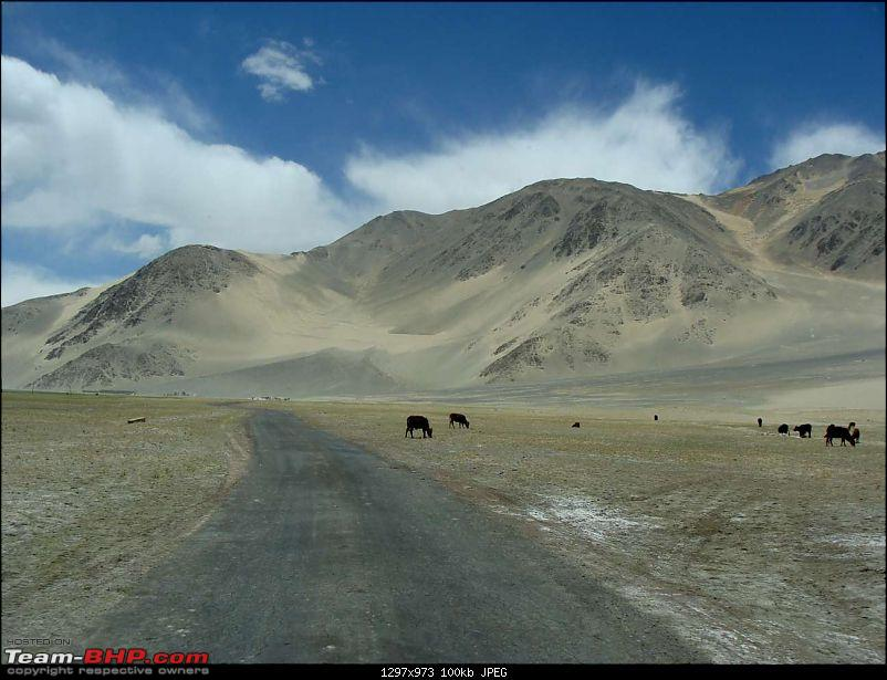 Hawk-On-Fours® (H-4®) Roadtrip:  Leh(t)'s go to Ladakh & Srinagar with QuickSilver.-tsaga2kiagar-8.jpg