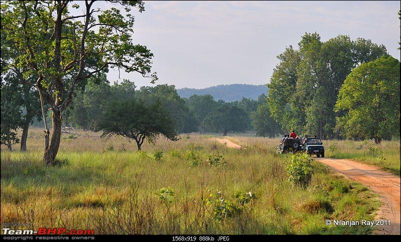 Call of the Wild: A 3500 km roadtrip to Pench, Bandhavgarh and Kanha in a Fortuner-dsc_7200.jpg
