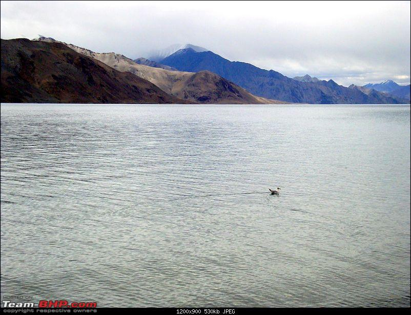 Fauji's Drivologues : Magical Mountainscapes - A Pictorial ode to Ladakh!-dsc00294.jpg