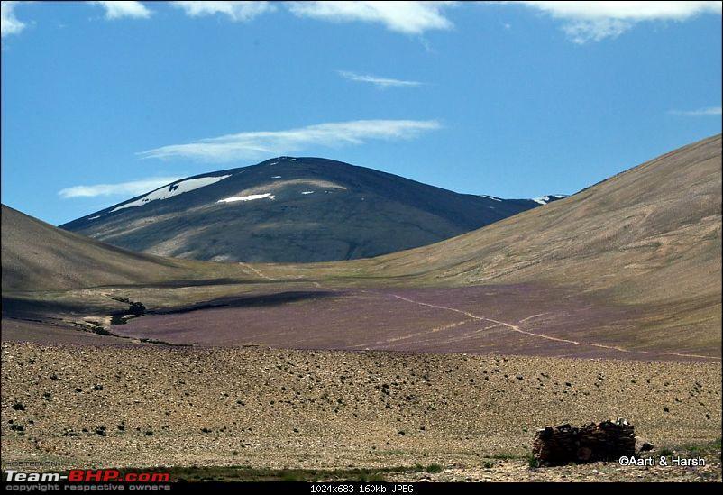 Ladakh & Zanskar: The road(s) less travelled-dsc_0364a.jpg