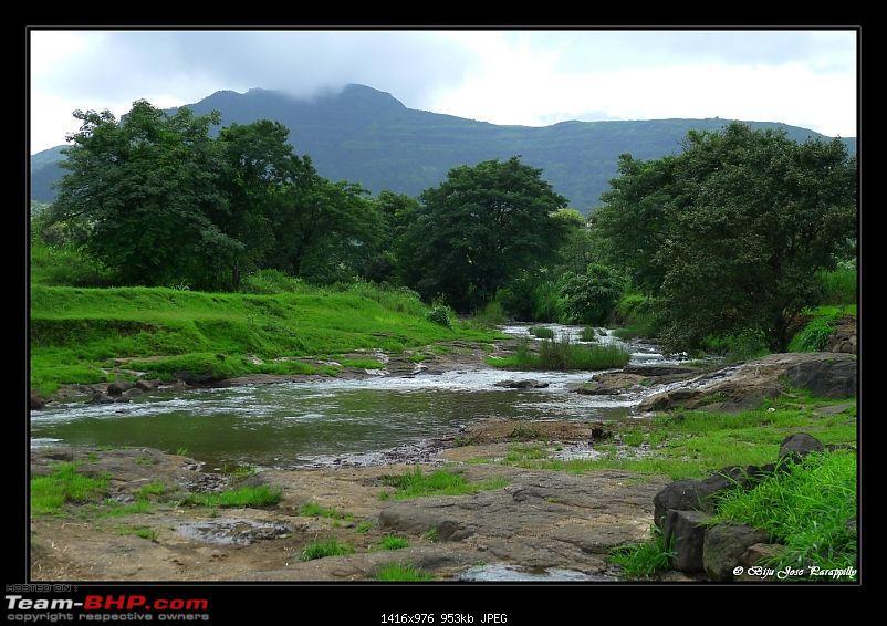 2011 Monsoon Trips: Hadshi (Temple, Lotus Flowers, Paddy Fields, Rolling Green Hills)-p1040331.jpg