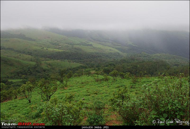 Chilly Mountains (Chikamaglur) and a detour to ancient Hoysala Empire-20110820ckm0058.jpg