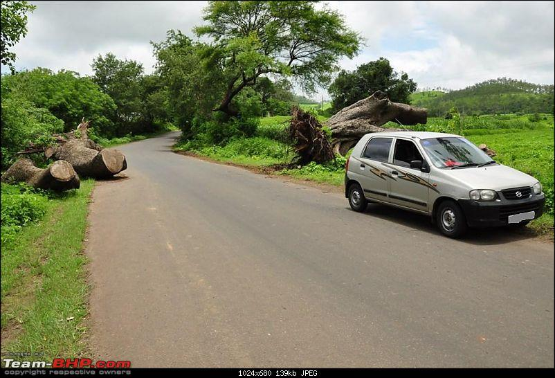 2 days, 2 states, 2 waterfalls and 1025 kms without a horn: A travelogue-dsc_0827.jpg