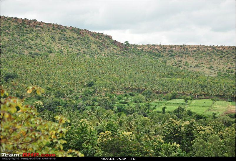 2 days, 2 states, 2 waterfalls and 1025 kms without a horn: A travelogue-dsc_0940.jpg