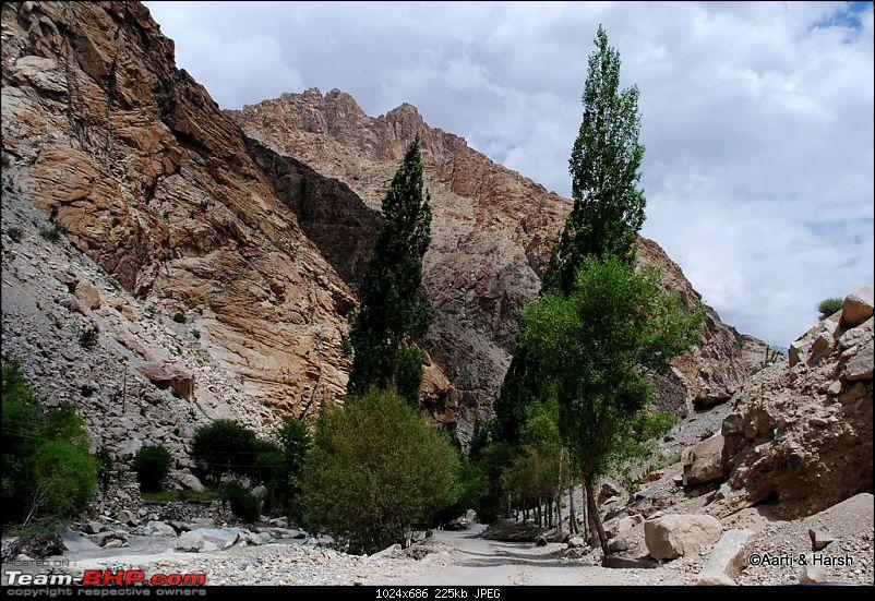 Ladakh & Zanskar: The road(s) less travelled-dsc_0629.jpg