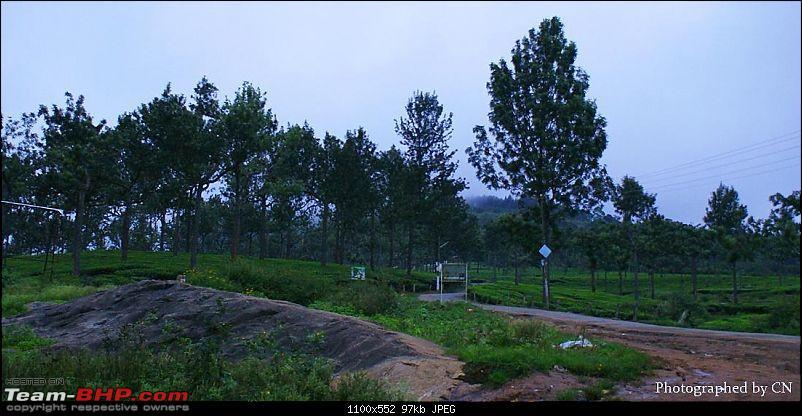 An Incredible Roadtrip to Trivandrum, Velankanni and Mesmerizing Munnar!-2-pooppara_way_to_munnar.jpg