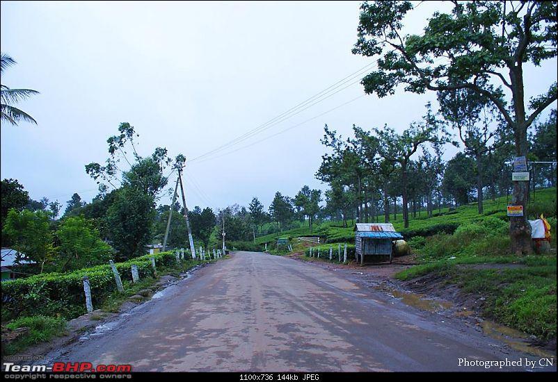 An Incredible Roadtrip to Trivandrum, Velankanni and Mesmerizing Munnar!-3-pooppara_way_to_adimali-.jpg