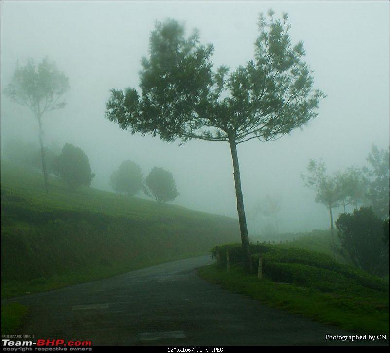 An Incredible Roadtrip to Trivandrum, Velankanni and Mesmerizing Munnar!-8-highway_to_-munnar.jpg