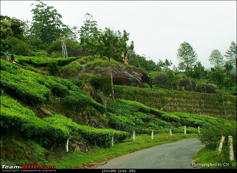 An Incredible Roadtrip to Trivandrum, Velankanni and Mesmerizing Munnar!-11-highway_to_-munnar.jpg