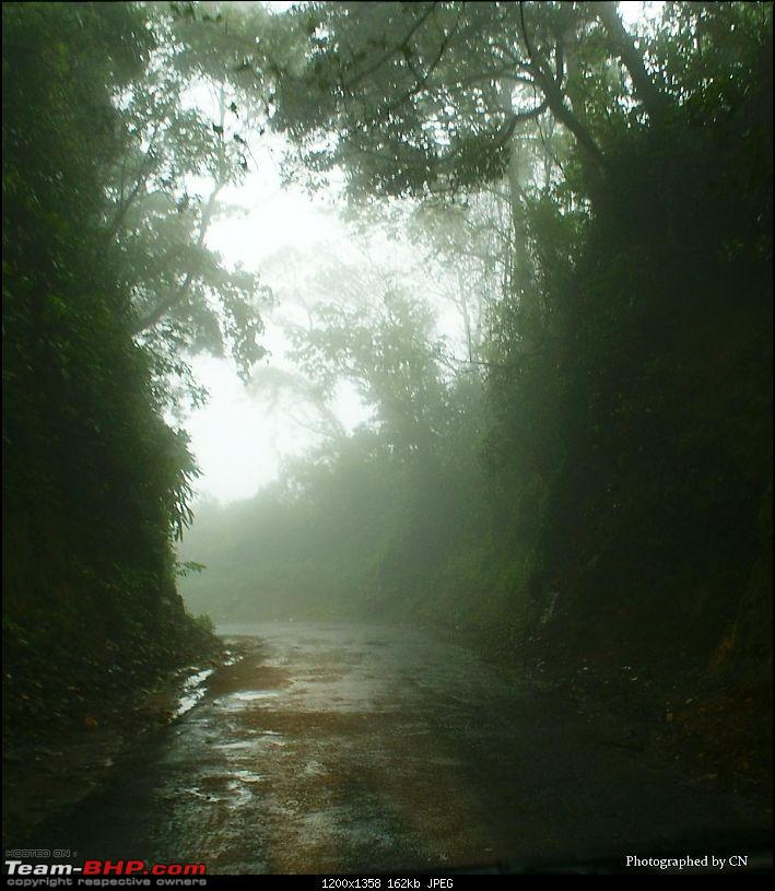An Incredible Roadtrip to Trivandrum, Velankanni and Mesmerizing Munnar!-10-mist_covered_highway.jpg