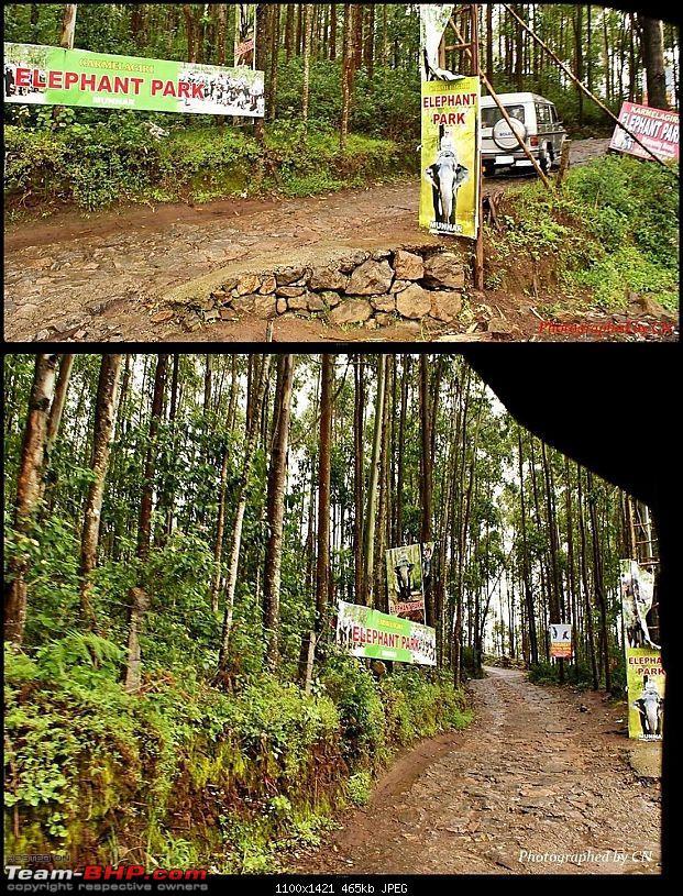 An Incredible Roadtrip to Trivandrum, Velankanni and Mesmerizing Munnar!-4-elephant_park.jpg</a><br /> <br /> <a href=