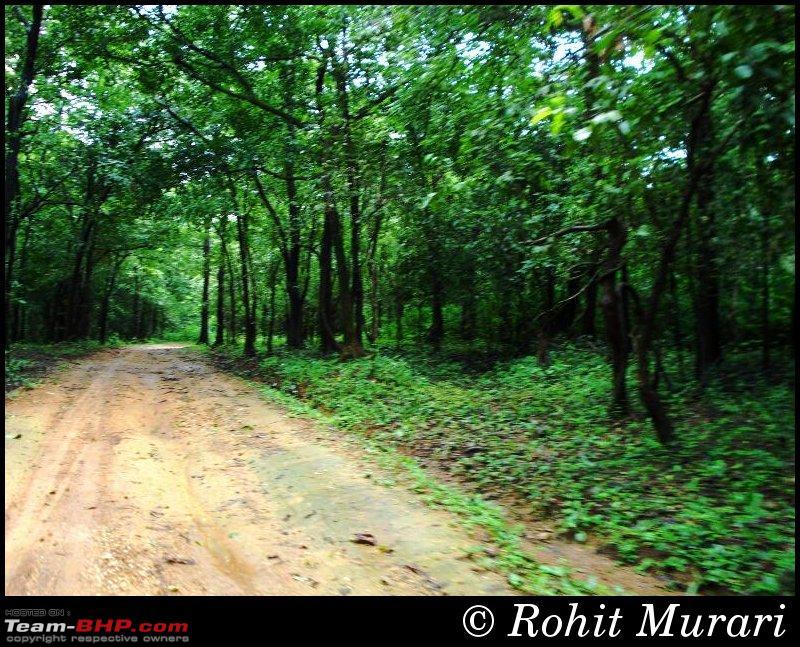 Name:  4003  Dudhsagar.jpg Views: 5074 Size:  184.9 KB