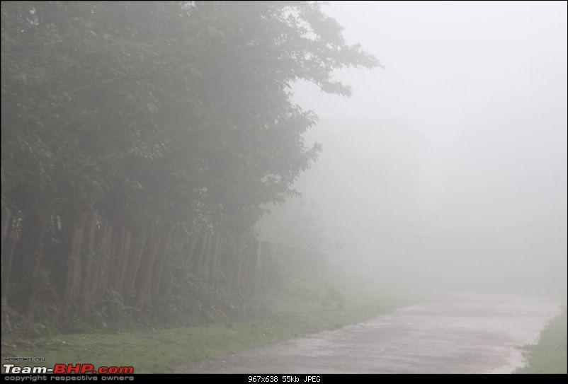 Weekend Travelogue: Bangalore-Chikmagalur-Sringeri-Agumbe-Shravanabelagola-Bangalore-agumbe01.jpg