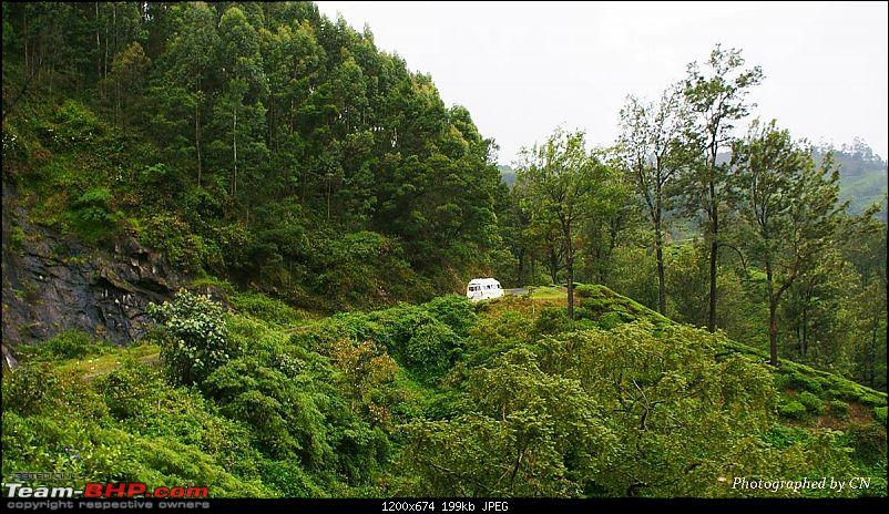 An Incredible Roadtrip to Trivandrum, Velankanni and Mesmerizing Munnar!-11-highway_to_munnar.jpg