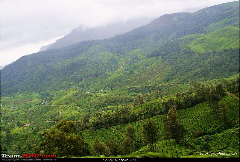 An Incredible Roadtrip to Trivandrum, Velankanni and Mesmerizing Munnar!-15-excellent_view.jpg
