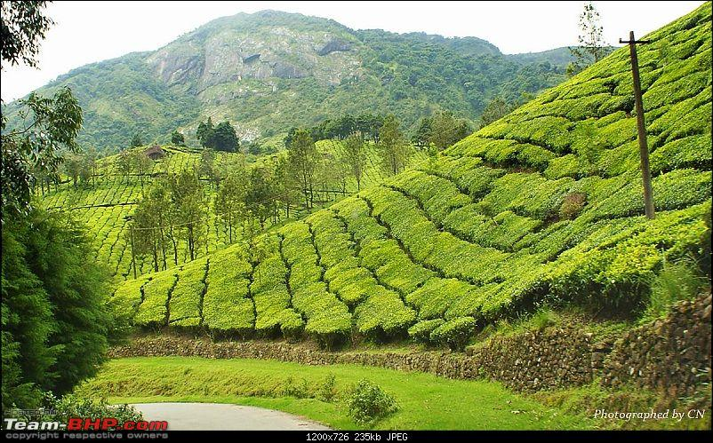 An Incredible Roadtrip to Trivandrum, Velankanni and Mesmerizing Munnar!-22-beauty_all_around_us.jpg